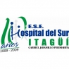 hospital-del-sur