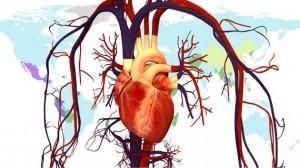 corazon enfermedades ingenieria hospitalaria cardioproteccion