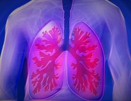 pulmon-epoc-cigarrillo-enfermedad-respiratoria-corazon-pulmonar-humo-salud-bienestar